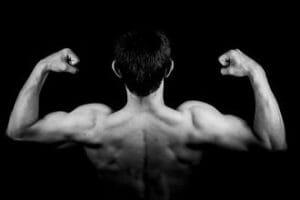 músculos do ombro