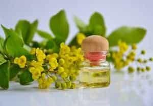 óleos naturais de cílios