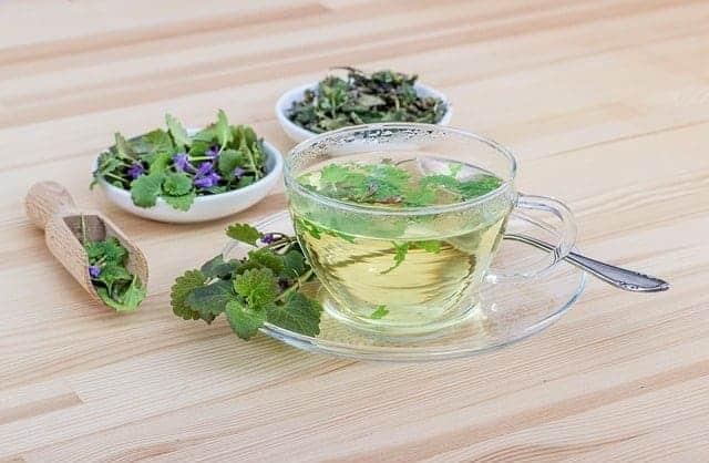 Chá de Ervas em uma xícara