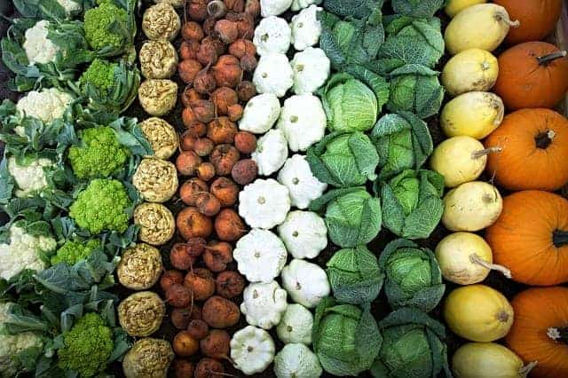 legumes dispostos em filas