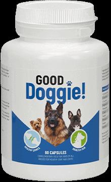 good doggie 1