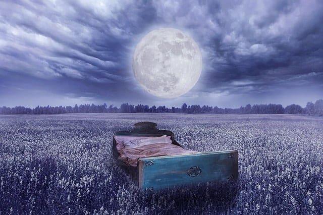 realidade dos sonhos - uma cama num prado, a lua cheia