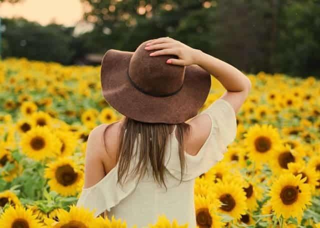 uma mulher caminha por um campo de girassóis